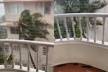 Anand Mahindra Shares Viral Video of Palm Trees Violently Swaying to Show Impact of Mumbai Rains