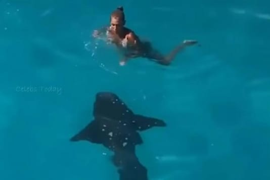 Video grab of woman coming in close contact with a shark in Bahamas waters.  (Image credit: YouTube)