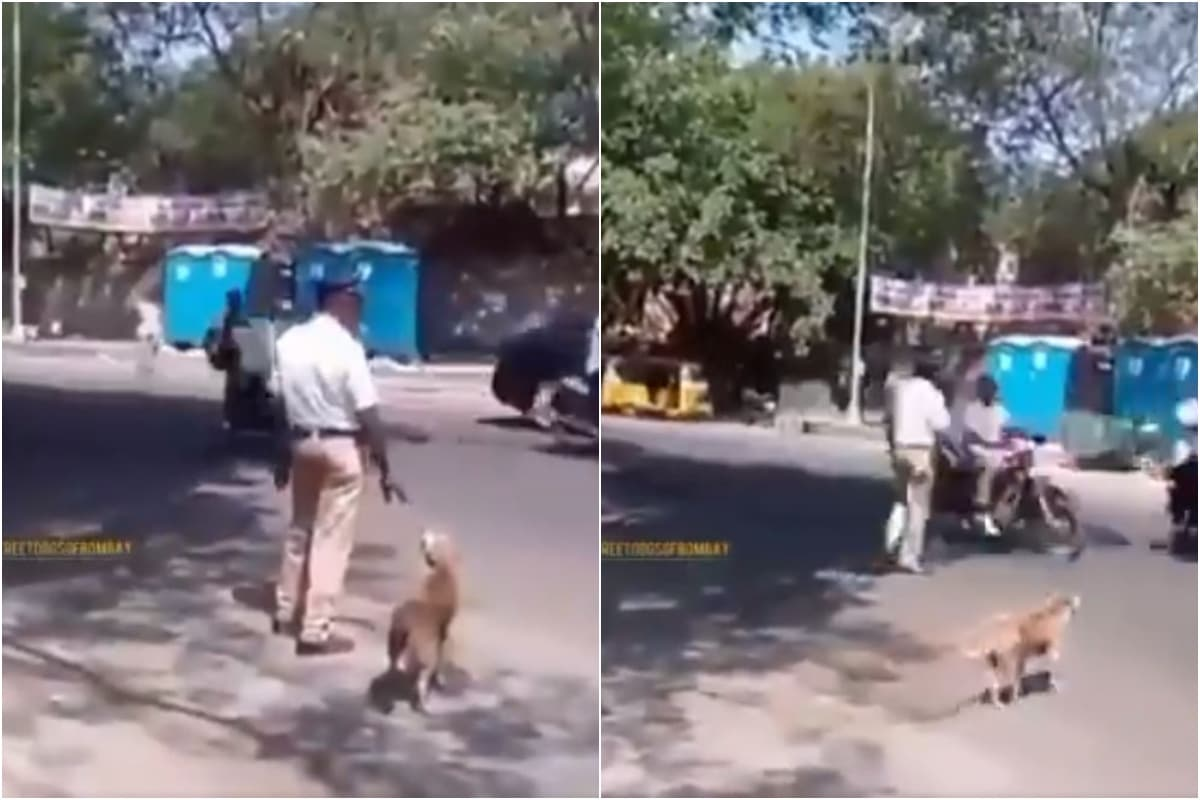 Mumbai Traffic Cop Stops Cars to Help Dog Cross a Busy Road, Viral Video Wins Hearts