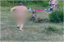 Germans Protest Against Slaughter of Wild Boar That Went Viral for Stealing Sunbathing Nudist's Laptop