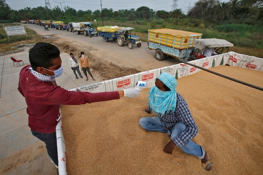 FILE PHOTO: A health worker uses an infrared thermometer to check the temperature of a labourer sitting on wheat crop in a tractor trolley at an entry gate of a wholesale grain market, during a nationwide lockdown to slow the spreading of coronavirus disease (COVID-19) in Chandigarh, India, April 20, 2020. REUTERS/Ajay Verma