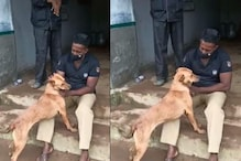 Kerala Dog that Found its Owner's Body after Landslide to be Adopted by Police Squad Trainer