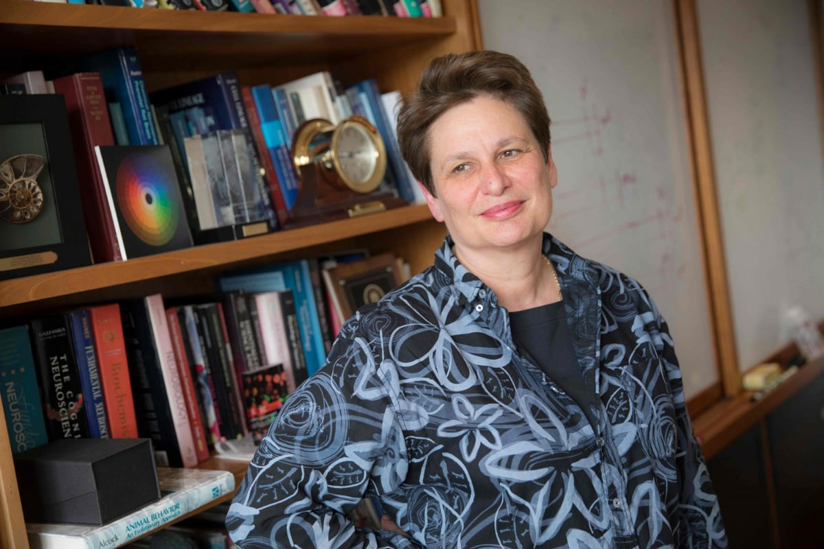 Harvard Scientist Wins 3-Million-Dollar Award For Proving Parenting Instincts 'Hard Wired' In Brain
