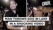 The Cruel Man Who Threw A Dog In Lake Arrested In Bhopal