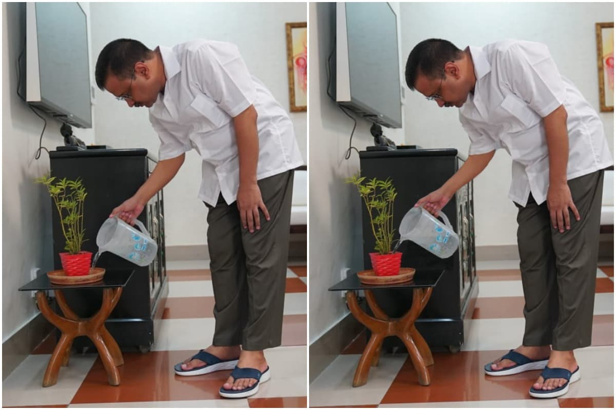 Two Identical Photos of Arvind Kejriwal Watering Plant Go Viral, Can You Spot the Difference? - News18