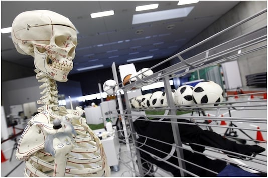 Scientists can now grow human bones artificially | Image credit: Reuters (Representational)