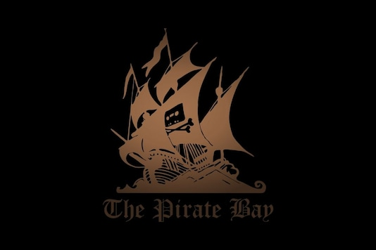 Two backup domains of The Pirate Bay went under the hammer