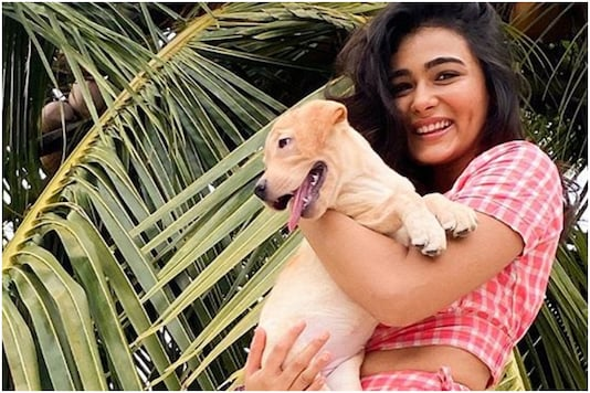 Birthday Girl Shalini Pandey Hopes the Year is Extraordinary for Her with Release of Jayeshbhai Jordaar