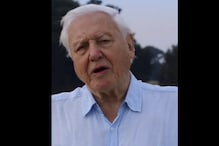 Sir David Attenborough Becomes Fastest Person to Have 1 Million Follow Instagram in Just 4 Hours