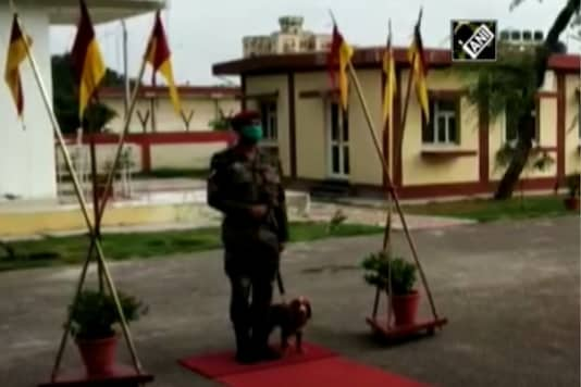 Image for representation only: Army dog. (Credits: ANI)