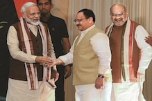 Headlined by PM Modi and Nadda, BJP's List of Star Campaigners for Bihar Elections Out