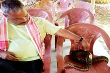Assam BJP MLA Wishes Pet Python 'Happy Hunting' After Snake Goes Missing
