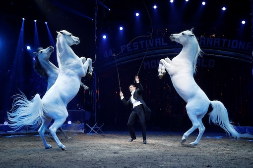 File photo of the 44th Monte-Carlo International Circus Festival. (Image for representation/REUTERS)