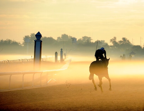 FILE - In this Oct. 11, 2010 file photo, a horse makes his way through the early morning fog at the Fair Grounds Race Course in New Orleans. Federal prosecutors say the owners of the horse racing track in New Orleans have agreed to pay a $2.8 million penalty for letting horse manure and urine into the citys drainage system for at least six years and to spend twice that on ending the discharges. The U.S. Justice Department described the fine to be paid by Churchill Downs Inc. as the largest ever paid by a concentrated animal feeding operation under the Clean Water Act, news outlets reported.  (AP Photo/Alexander Barkoff, File)