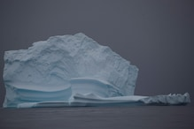 Giant Iceberg the Size of a US State Headed for British Island in Atlantic Ocean, Wildlife at Risk