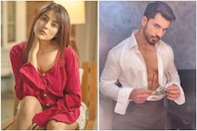 Ex-Contestants Shehnaaz Gill, Gautam Gulati to Join Bigg Boss 14 as Toofani Seniors?