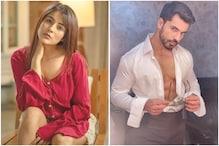 Ex-Contestants Shehnaaz Gill, Gautam Gulati to Join Bigg Boss 14 as Toofani Seniors?