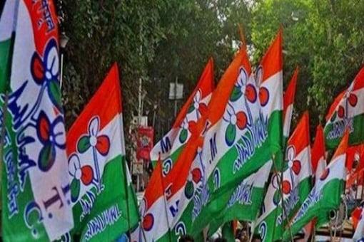 File photo of TMC flags. (PTI)
