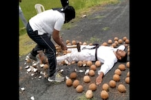 Nellore Duo Enter Guinness World Record for Smashing Most Number of Coconuts While Blindfolded