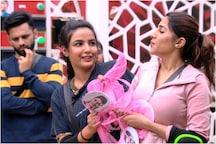 Bigg Boss 14 Day 13 Written Updates: Rubina Shouting 'Women Power' After Nikki-Jasmin's Task Irks Sidharth