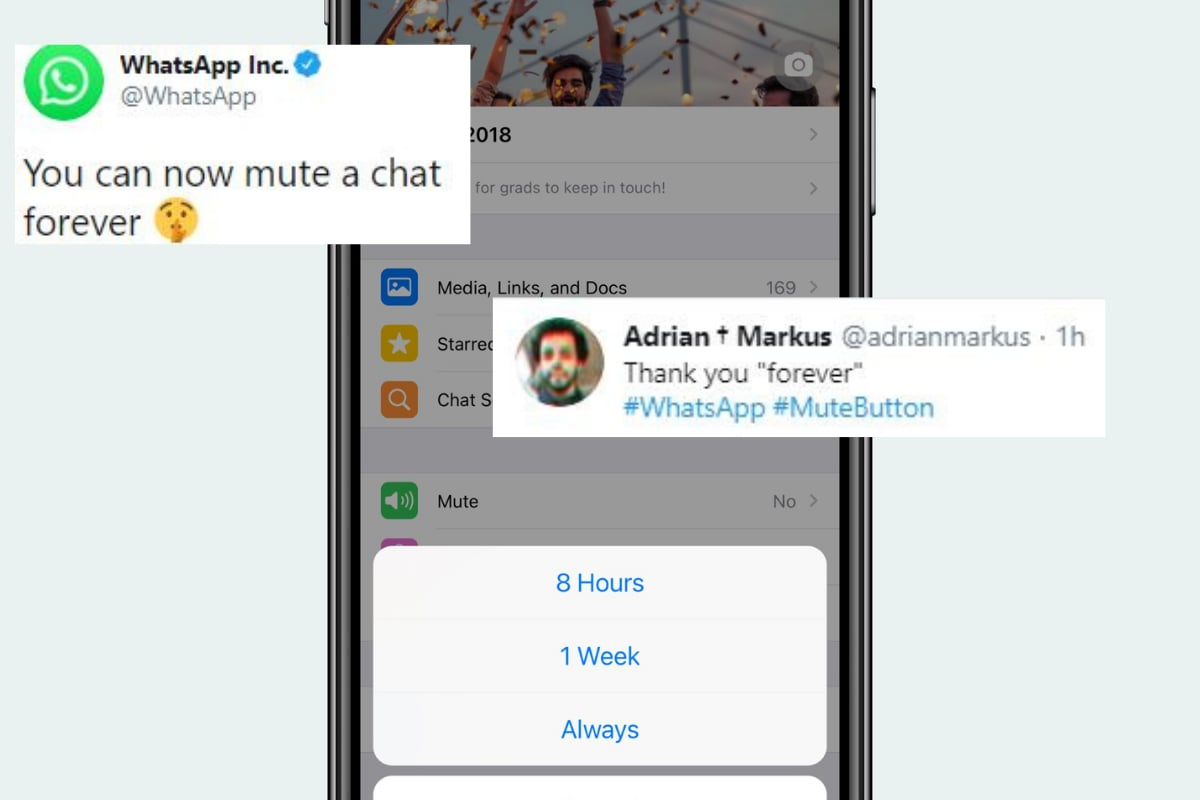 'It is Finally Here': WhatsApp's 'Forever' Mute Option is Everything that People Wanted
