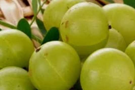 7 Amazing Health Benefits of Amla
