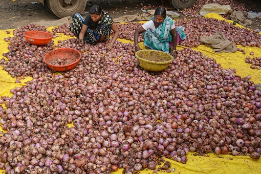 Vendors sort onions as they wait for customers, at a wholesale market. 27, 2020. (PTI Photo)