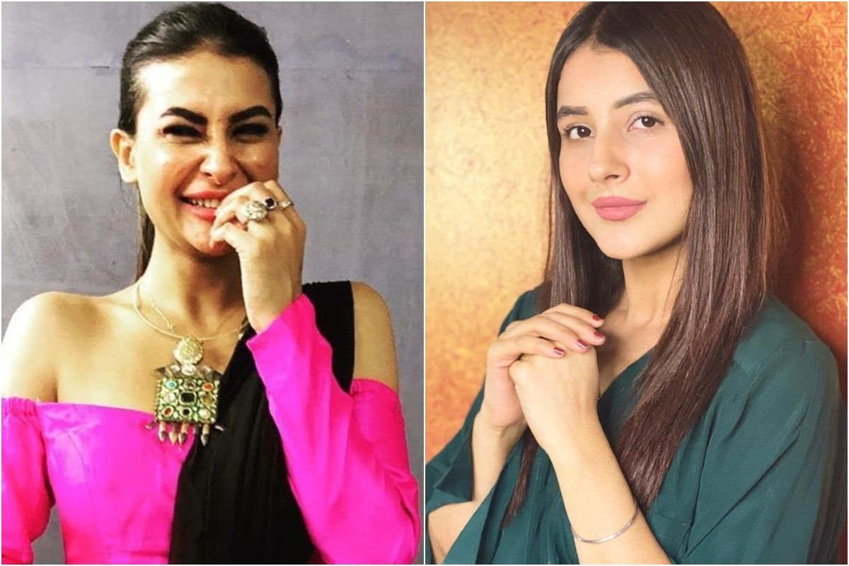 Why Do You Overact? Bigg Boss 14 Contestant Pavitra Punia's Question to Shehnaaz Gill