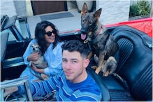 Priyanka Chopra Jonas is Missing Her 'Boys' in the United States as Actress Heads Back to Work
