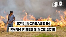 Why Is There An Increase In Punjab Farm Fires This Year?