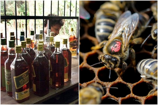 From hooch to honey | Image credit: Reuters (Representational)