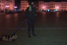Man in Czech Republic Walks His 'Dog' After Curfew Hours, Gets Questioned by Cops