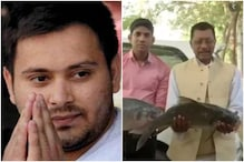 RJD Supporters Bring Raw Fish for Tejashwi Yadav as Token of Luck While Bihar Awaits Election Results