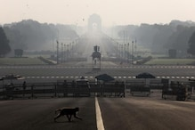 Delhi's Air Quality Remains 'Poor', Likely to Deteriorate Due to Unfavourable Meteorological Conditions
