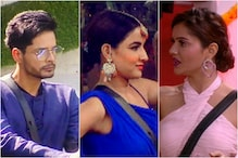 Bigg Boss 14 Day 42 Written Updates: Shardul Pandit Evicted; Jasmin Says Rubina has 'Superiority Complex'