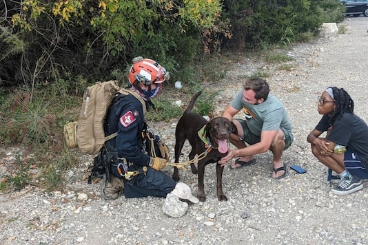A dog in Texas survives 70-foot fall. (Credit: @ATCEMS/ Twitter)