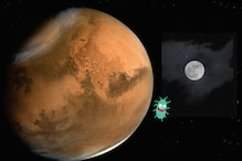 ISS Experiment Shows Bacteria Can Extract Essential Minerals from Mars and Moon Rocks