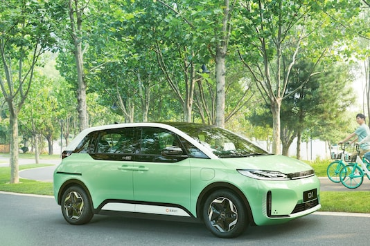 D1 Electric Car. (Image source: BYD)