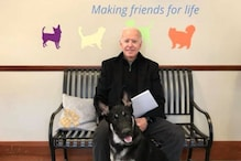 Joe Biden to Bring Dogs Back to the White House, Meet Some Other Adorable 'First Pets'