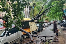 Cyclone Nivar: List of Emergency Helpline Numbers