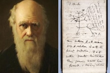 Darwin's Notebooks Went Missing 20 Years Ago. Now, You Can Help Find Them