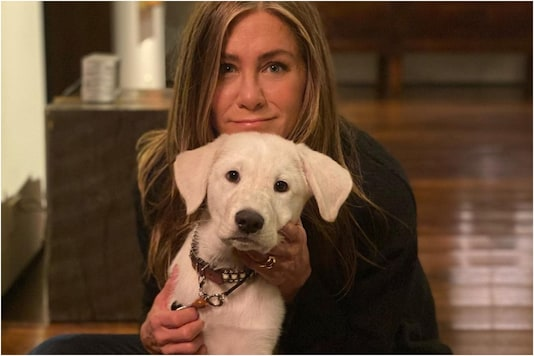Jennifer Aniston Poses with Her Rescue Puppy Lord Chesterfield for Cutest Thanksgiving Post