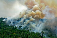 Despite Protests Against Amazon Fire, Brazil's Deforestation Has Reached 12 Year High