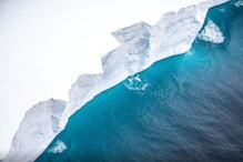 Giant Iceberg is Headed for Collision with South Atlantic Penguin Colony Island, Could Crush Marine Life