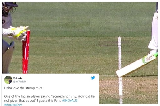"""Buzz India vs Australia 2nd Test Boxing Day Test: """"Something Fishy. How Did he Not Give That as Out"""" - Stump Mic Virat Picks Up Indian Player's Rishabh Pant Disbelief Third Umpire's Controverisal Decision"""