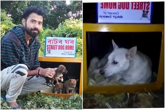 Abhijit Dowarah from Shivsagar, Assam, is helping stray animals find homes | Image credit: IANS/Twitter