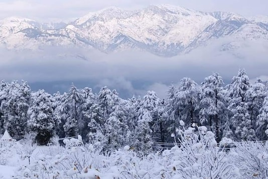 Fresh Snowfall in Ramban District Jammu and Kashmir. (Bilal Bali, News18)