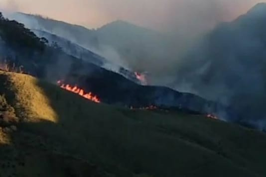 The fire broke out in the Dzukou Range in Nagaland on Tuesday and has crossed over to Manipur side. (Image credits: Twitter)