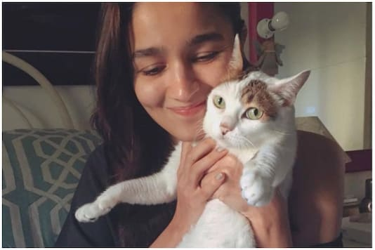 Alia Bhatt with a cat. Image for representation purposes only.