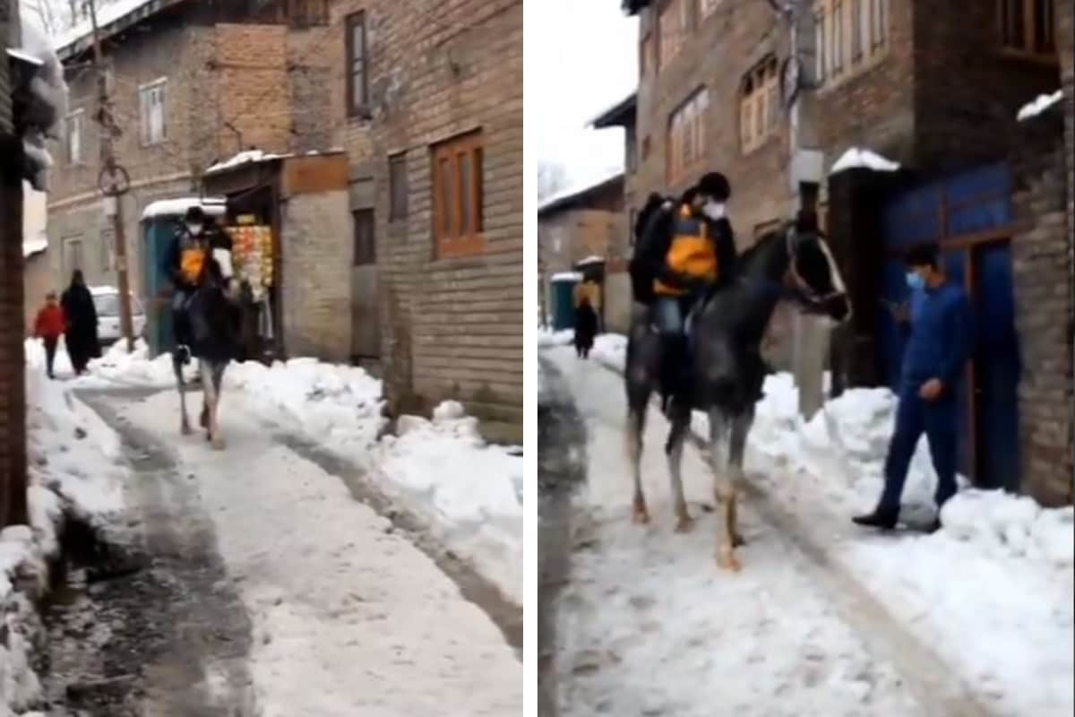 Watch: Man Arrives on Horseback to Deliver Parcel as Snow Chokes Roads in Kashmir